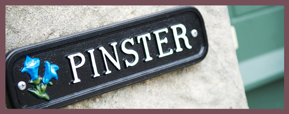 Pinster Sign