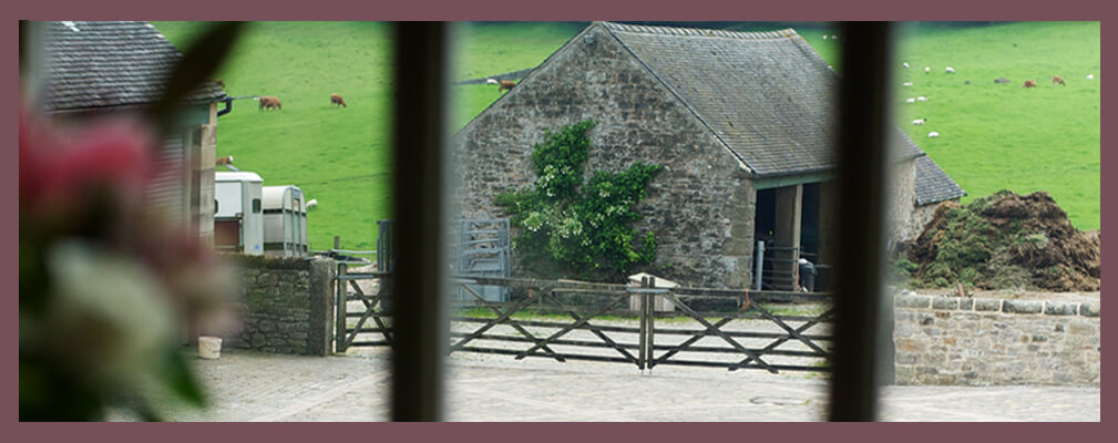 Over look a working farm from Winnets Cottage